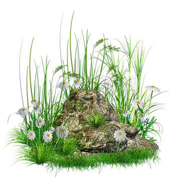 Stone_with_Grass_and_Flowers_png_Clipart