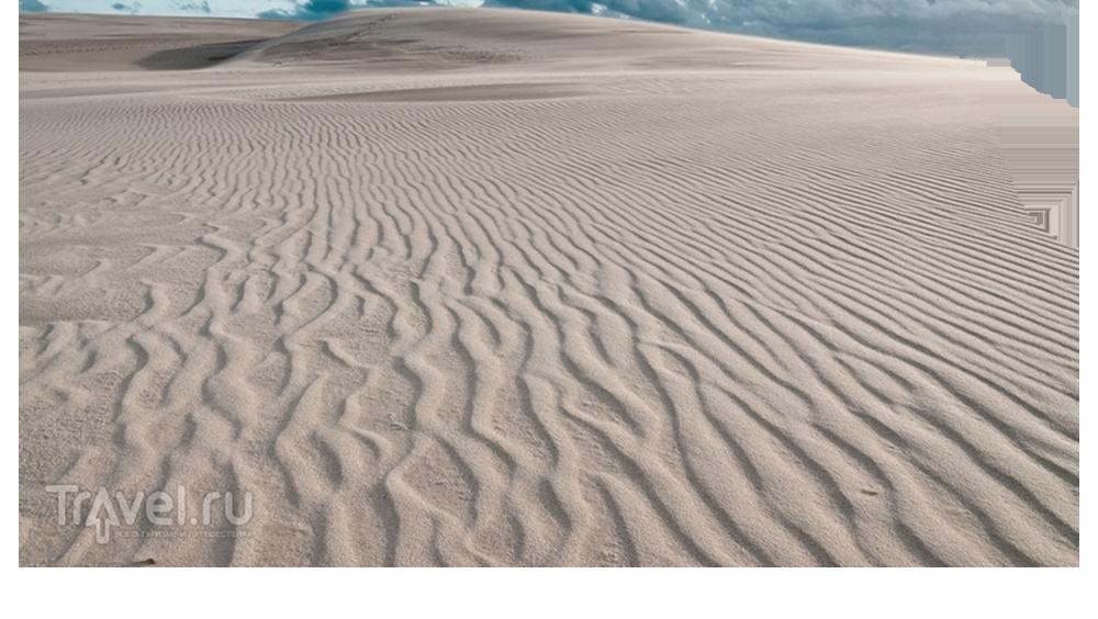 дюны.png