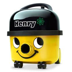 YELLOW HENRY