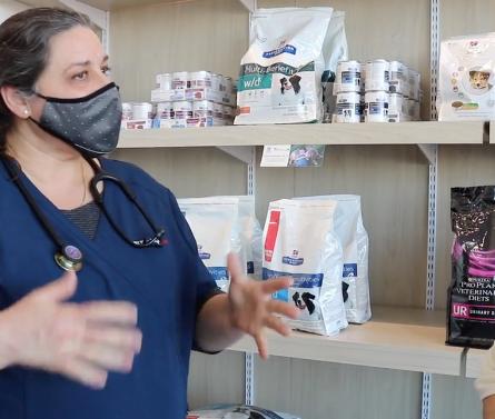VetmobilePlus: Rhonda & Dr. Nosotti Talk Dog Nutrition