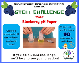 week 7 blueberry pH paper.png