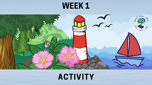 Week 1 Activity.png