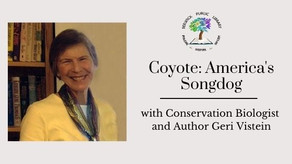 """Coyote: America's Songdog"" with Geri Vistein"