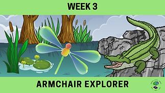 Week 3 Armchair Explorer.png