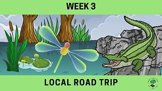 Week 3 Local Road trip.png