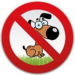 les animaux sont interdits