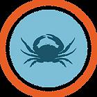 Invasive Green Crab Management