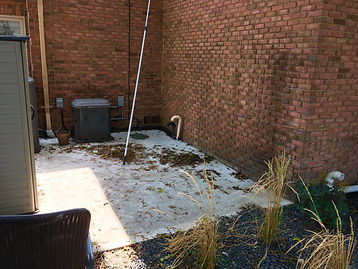 exterior cleaning 1.JPG