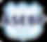 asebp_logo-300x265-300x265.png