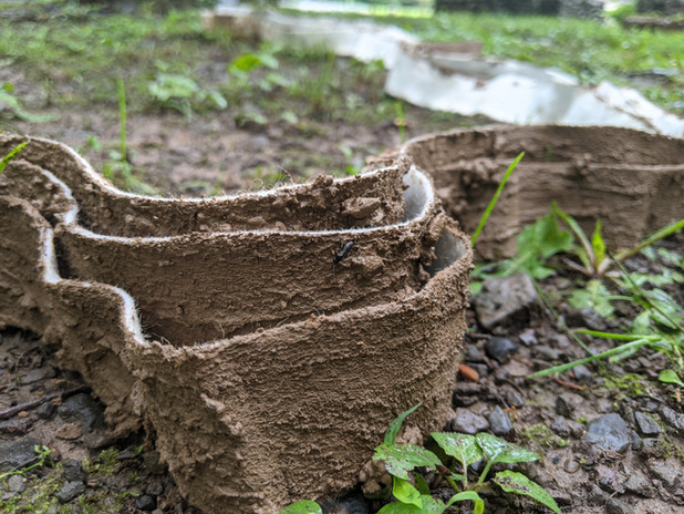 clay-wool-strip-1.jpg