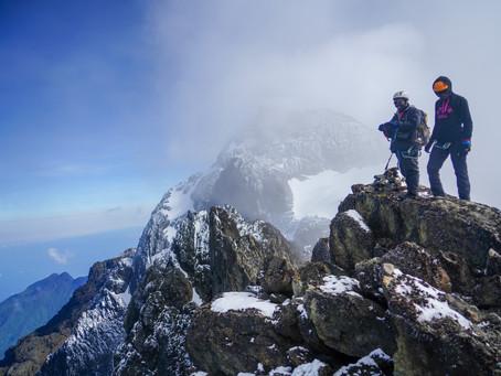 How Eco-Tourism saved the Wildlife in the Rwenzori Mountains of Uganda