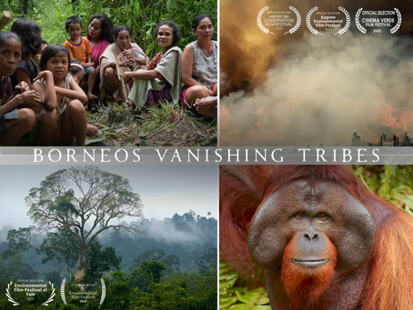 Take Action on Palm Oil ~ Borneo's Vanishing Tribes