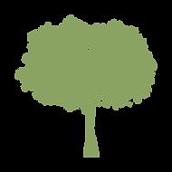 AdeleVahn_tree_GREEN.png