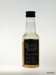 Black Velvet II