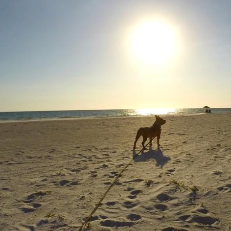 Reddington Shores Beach, Florida