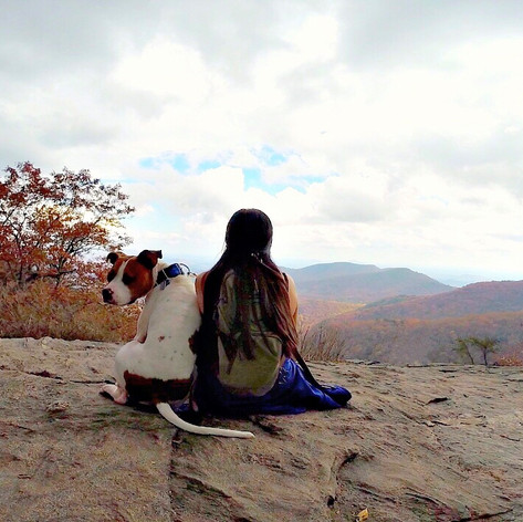 Preachers Rock Trail: Suches, Georgia