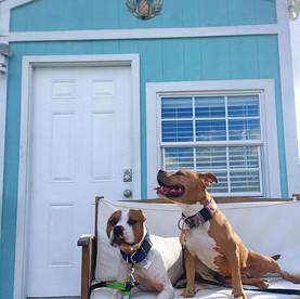 Lakefront Tiny Home: Orlando, Florida