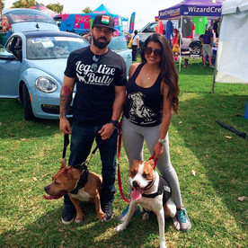 Humane Society Walk For The Animals: Bayfront Park, Florida
