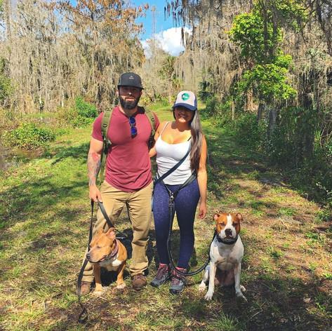 Bird Rookery Swamp Trail: Naples,Florida