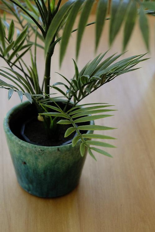Planta artificial palmerita.