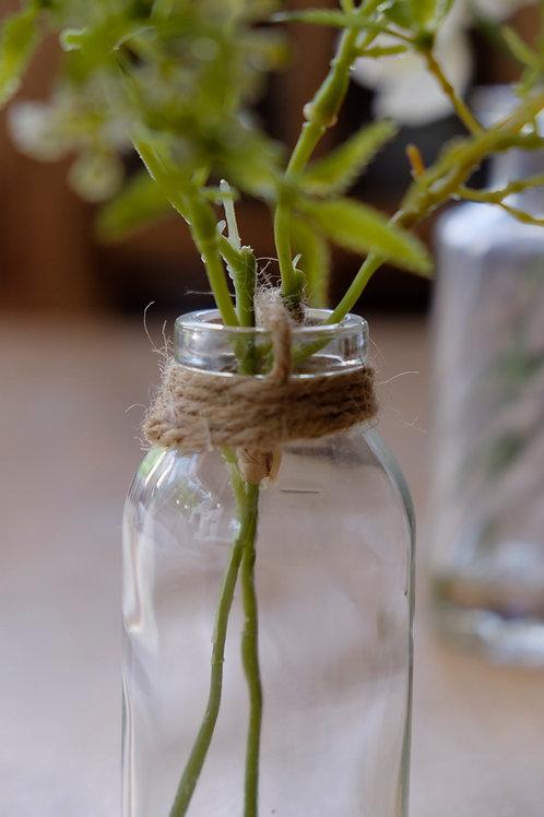 Botellita de vidrio con planta
