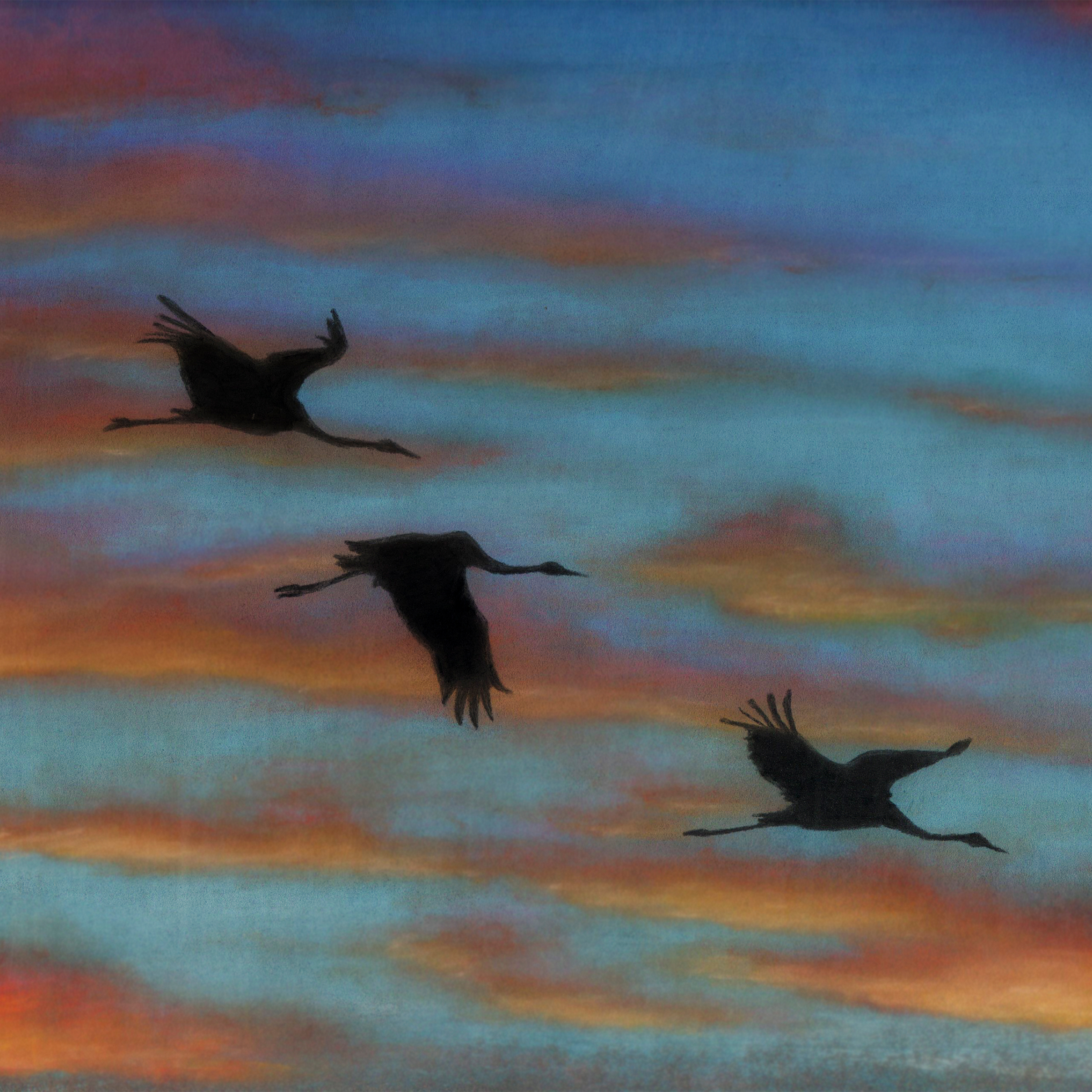 Sunset Cranes illustration