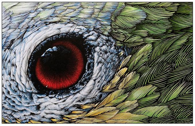 Parrot Crop.jpg