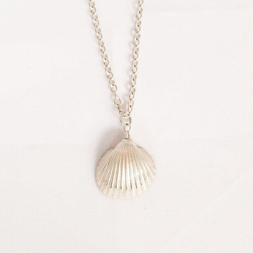 Midi Cockle Shell Necklace