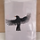 Thumbnail: Blackbird Greetings Card