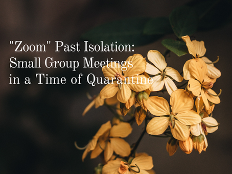 """Zoom"" Past Isolation: Small Group Meetings in a Time of Quarantine"