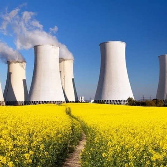 Firing Line Debate on Nuclear Power
