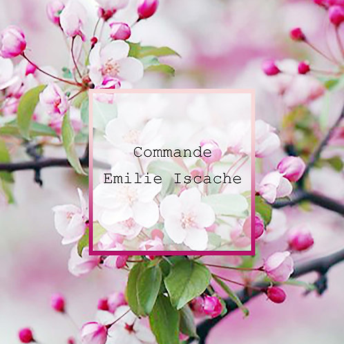 Commande Emilie Iscache