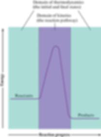 thermo vs kinetics.jpg
