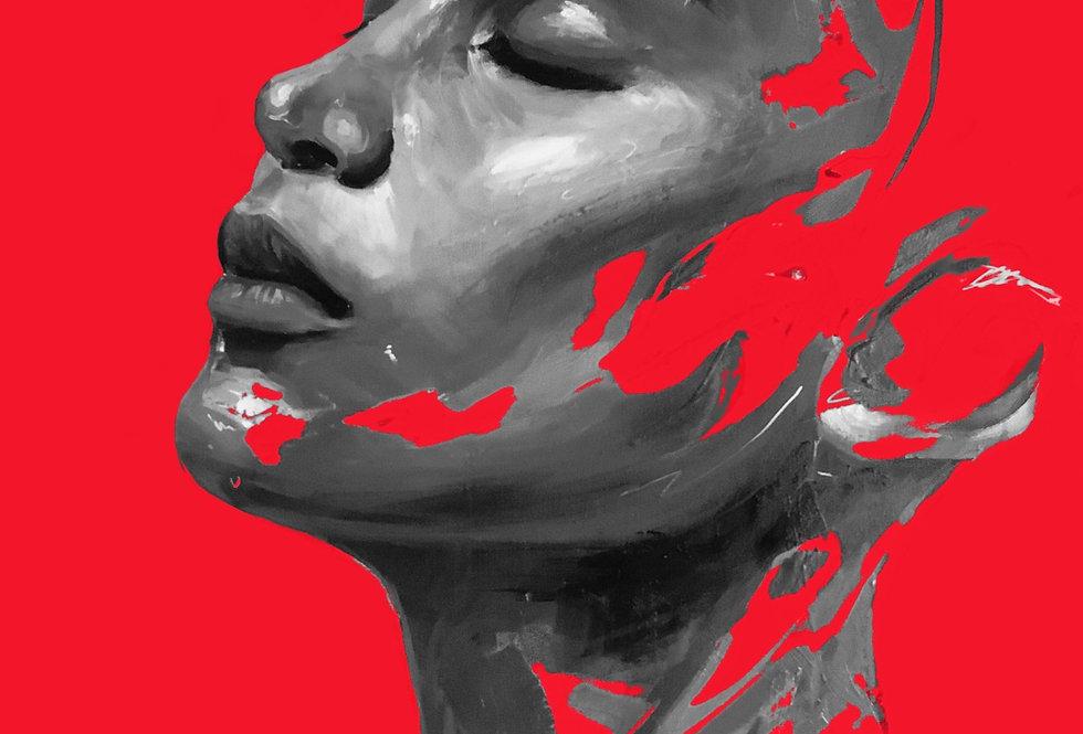 «SILENT FIRE»