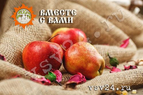 Яблоки «Глостер»