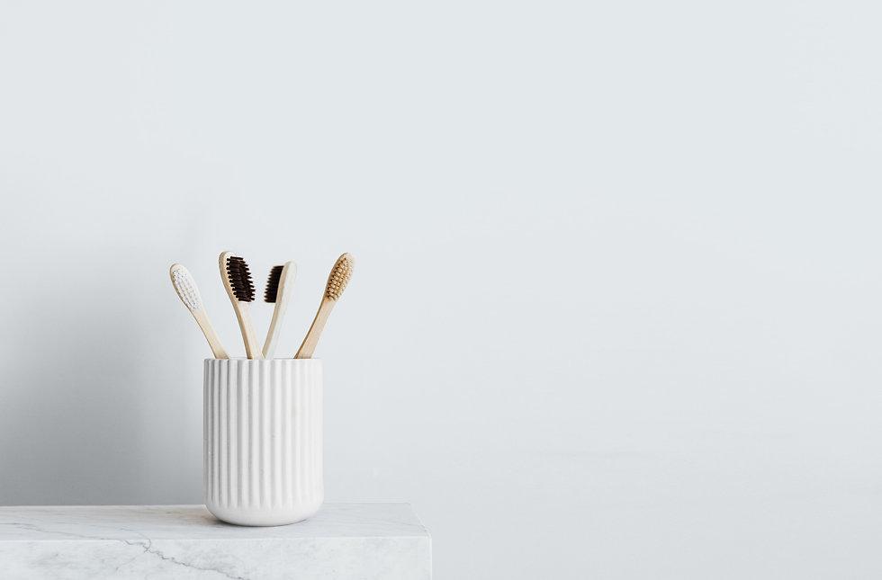 toothbrushes2.jpg