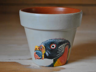 King Vulture Hand Painted Pot £10