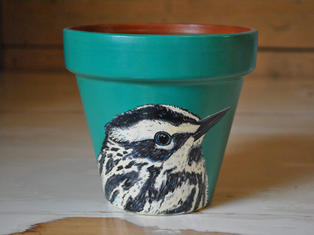 Black & White Warbler Hand Painted Pot £15