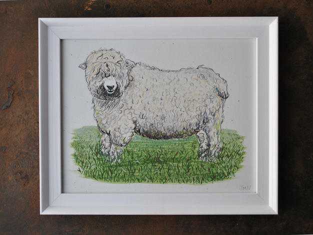 Greyface Dartmoor, Original Gouache Painting £60