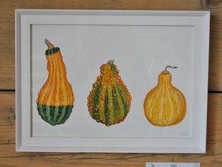 Ornamental Gourds, Original Gouache Painting £60