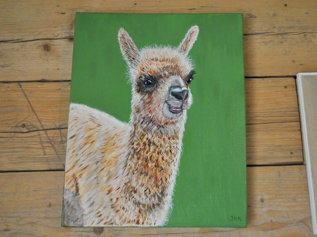 Baby Alpaca Original Oil Painting £240