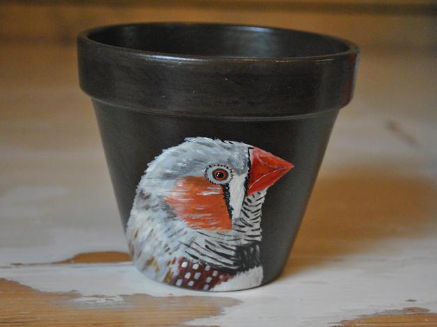 Zebra Finch Hand Painted Pot £10