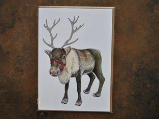 Reindeer Christmas Card £2.50