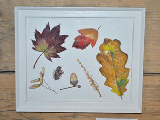 Autumn Leaves, Original Gouache Painting £50