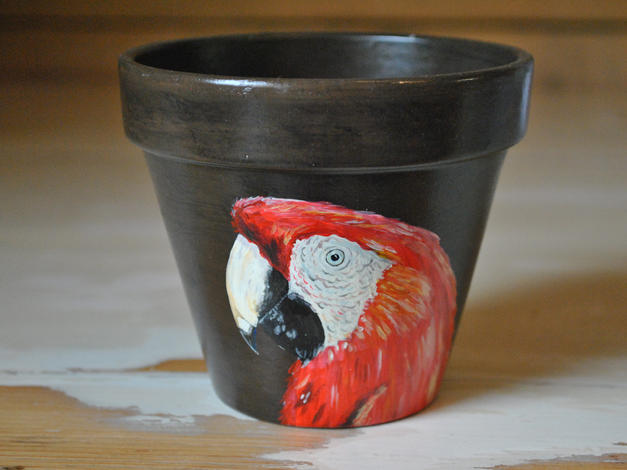 Scarlet Macaw Hand Painted Pot £10