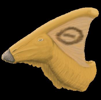 Parasaurolophus Bust