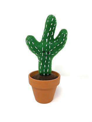 Fun Cactus in Terracotta Pot