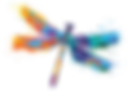 EDUCARE_Logo_Dragonfly.png