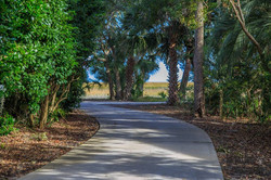 Miles of Cart Paths