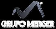 GrupoMerge con logo6.png